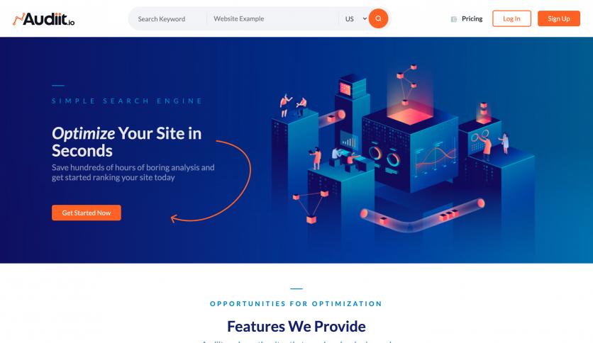 Audiit website Design
